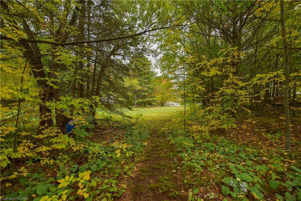 7852 PARK LANE Crescent, Washago, Ontario (ID 225227)
