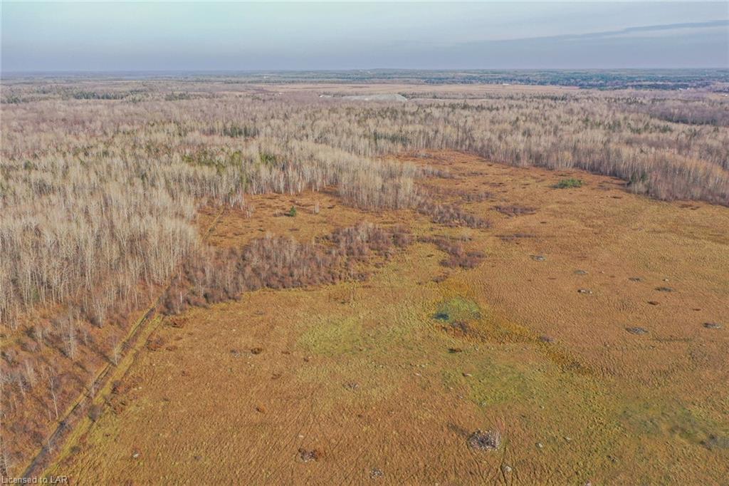 1361 CON RD 2 Concession, Ramara Township, Ontario (ID 40038488)