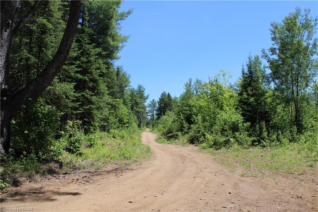 LOGGING Road, Hastings Highlands, Ontario (ID 273440)
