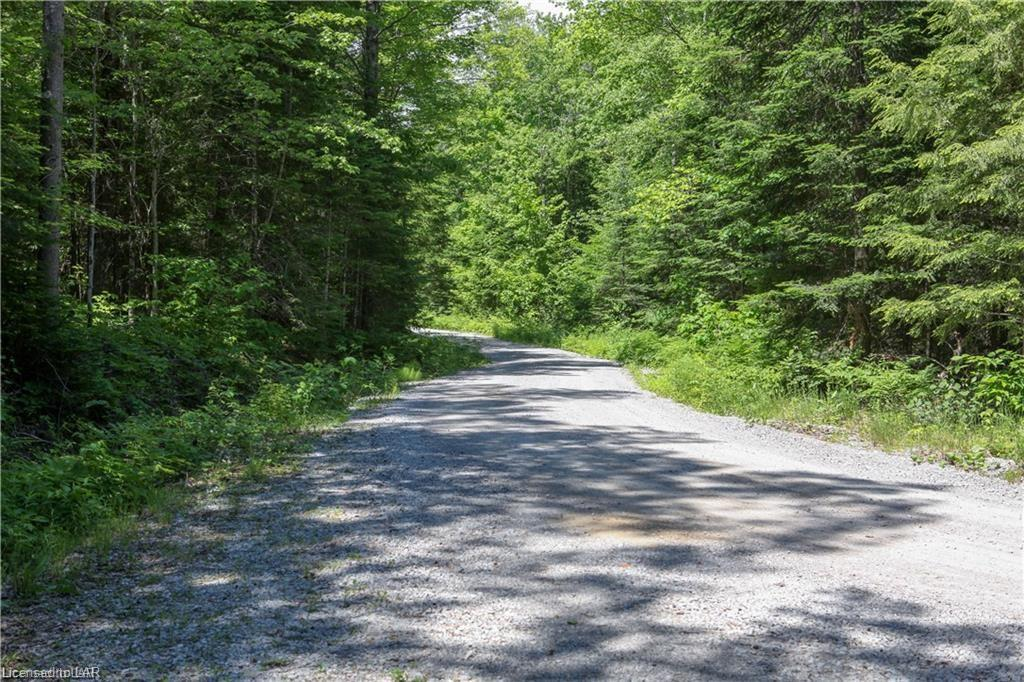 NA PROSPECT LAKE Road, Bracebridge, Ontario (ID 239824)