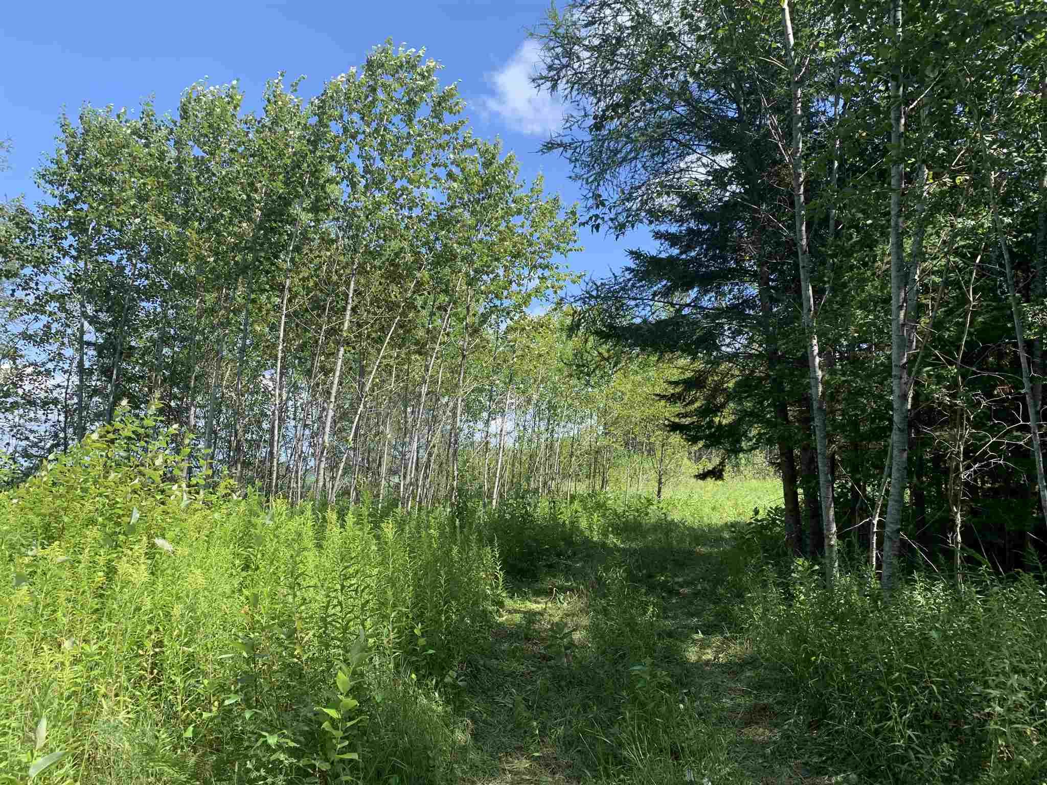 1084 B Line Road, St. Joseph Island, Ontario (ID SM128395)