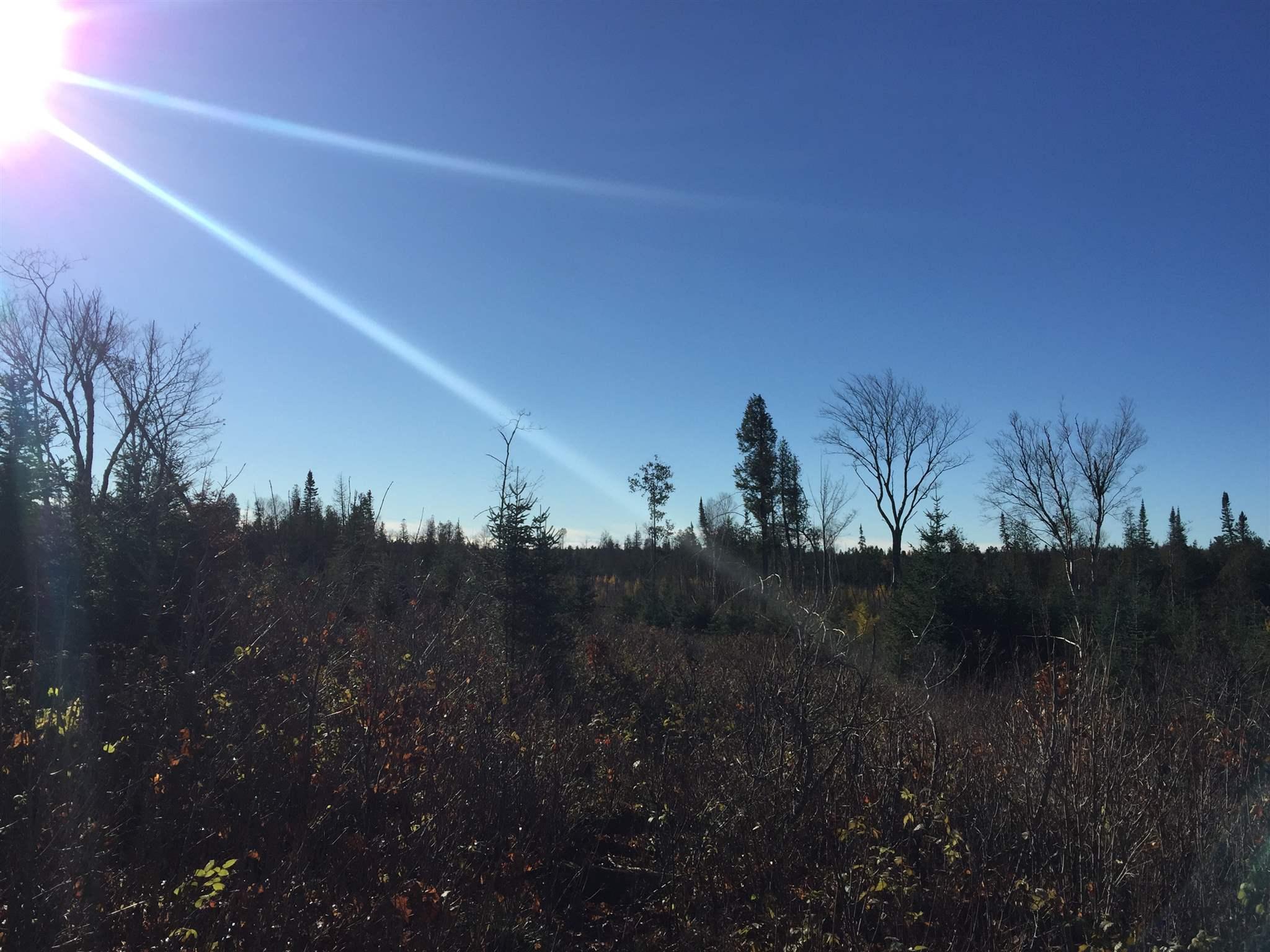 2559 Q AND R LINE Road, St. Joseph Island, Ontario (ID SM128387)