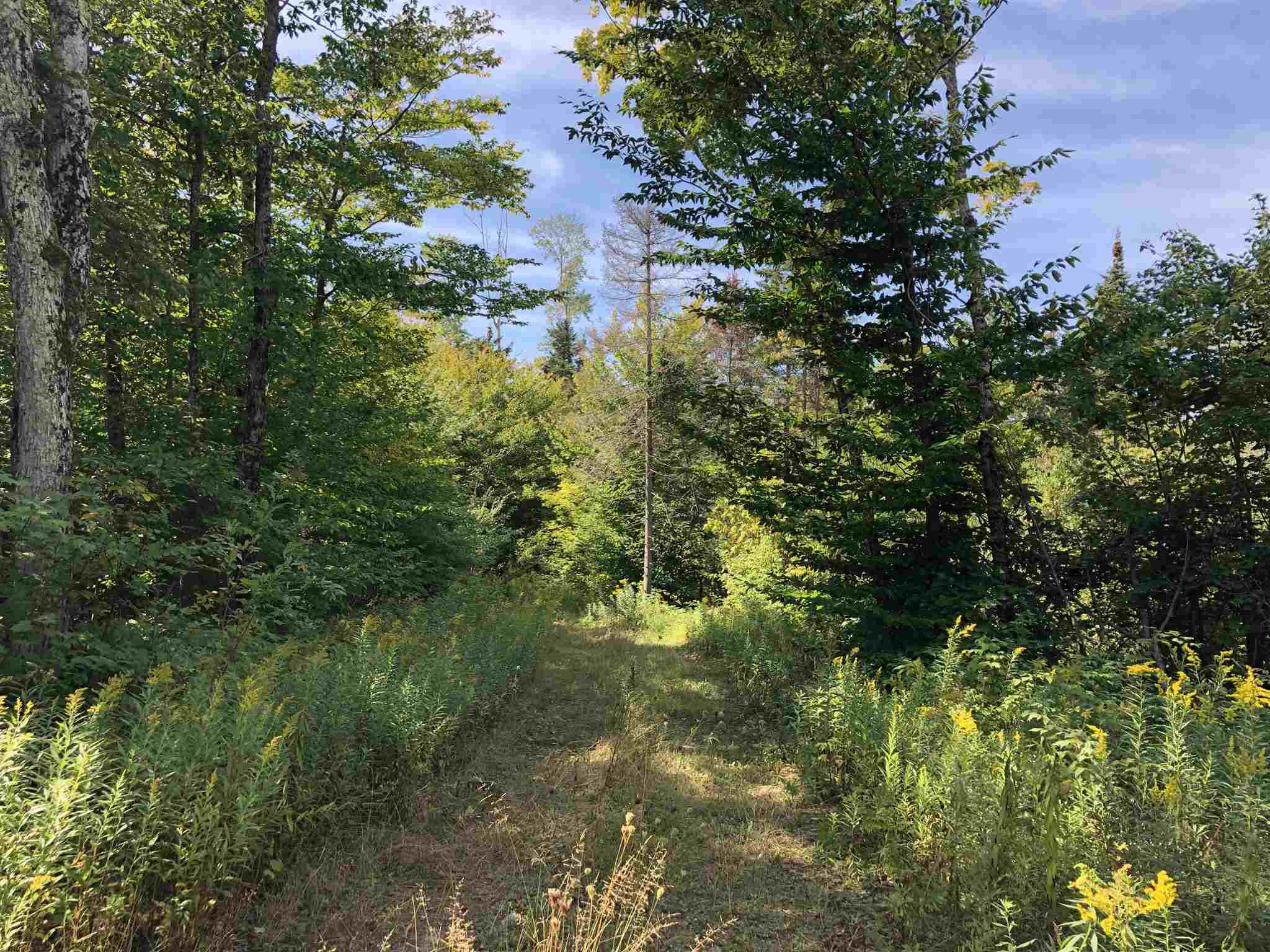 LOT 7 WIERZBICKI Drive, St. Joseph Island, Ontario (ID SM128661)