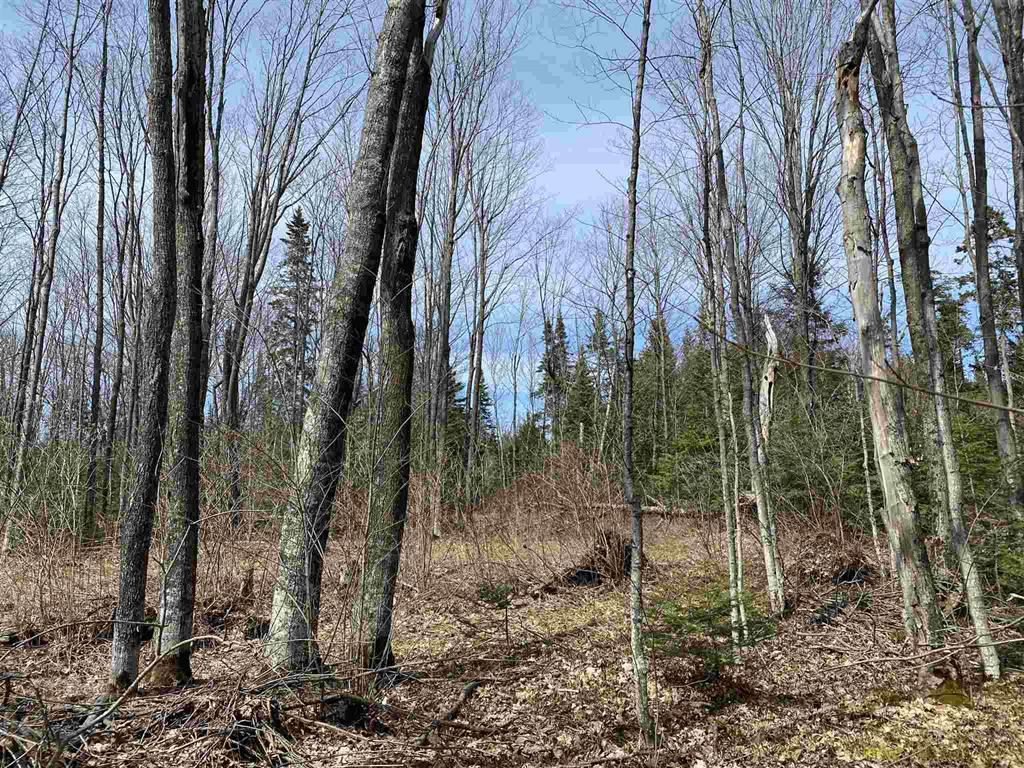 Lot 79 Marlette Drive, Havilland, Ontario (ID SM130558)