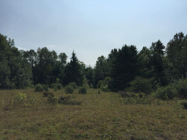 Lot 8 Con 6 Sunset Beach Road, Thessalon, Ontario (ID SM131009)
