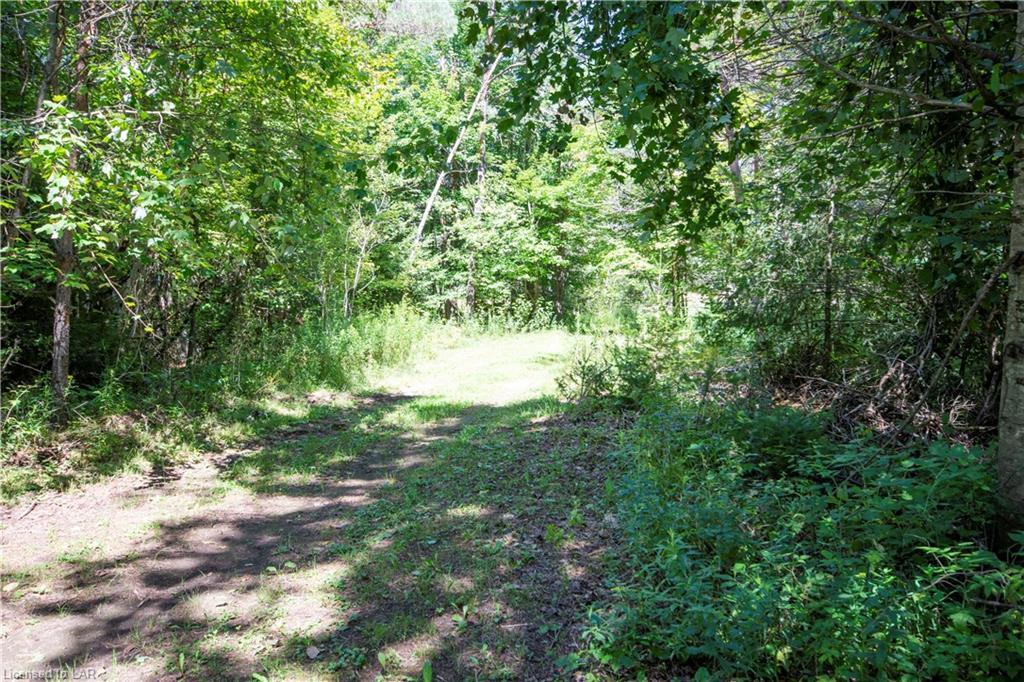 56 BURKE Road, Burnt River, Ontario (ID 239034)