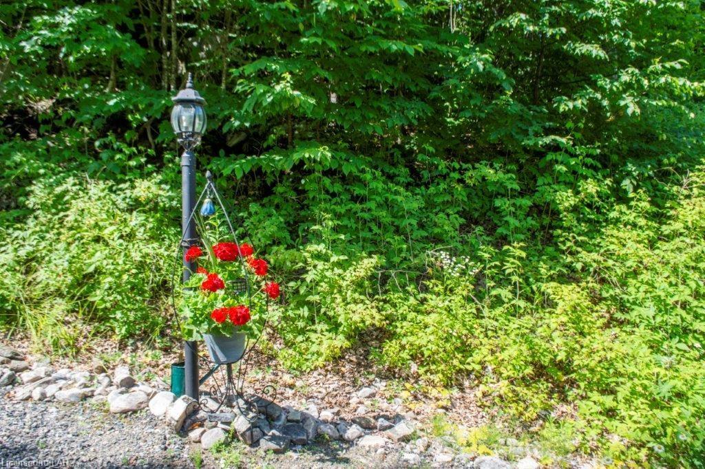 1470 WEST SETTLEMENT Road, Haliburton, Ontario (ID 245938)
