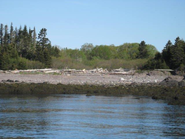 - Bliss Island, Charlotte County, New Brunswick (ID SJ165395)