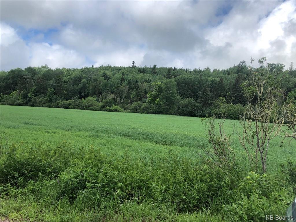 480 Upper Goshen Road, Elgin, New Brunswick (ID NB048753)