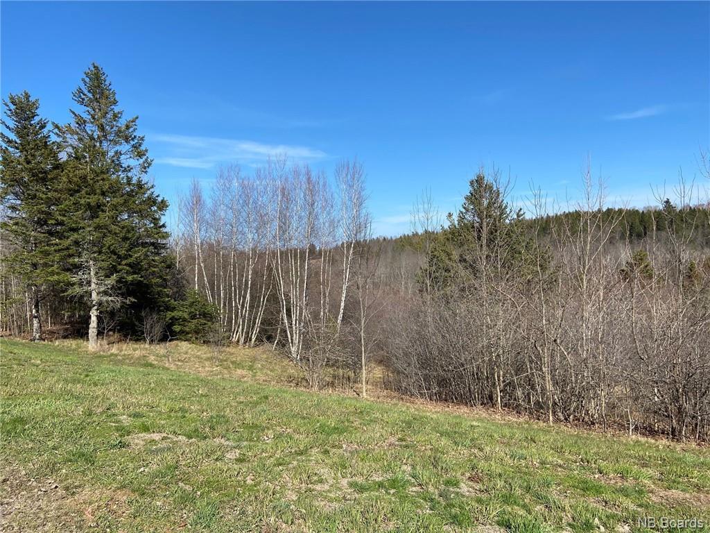 - Wards Creek Road, Wards Creek, New Brunswick (ID NB056491)