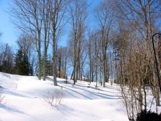 8 WOODRIDGE DR, Quispamsis, New Brunswick (ID SJ110905)