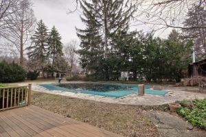 Inground Pool in Private Back Yard
