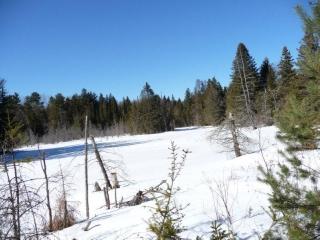4730 COUNTY ROAD 121, Minden Hills, Ontario (ID 1132430)