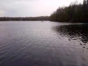 Lot 8 Cannonball Lake, Irondale, Ontario (ID 392210108)