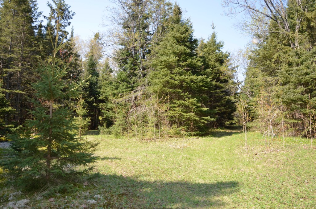10736 COUNTY ROAD 503, Gooderham, Ontario (ID 392720116)