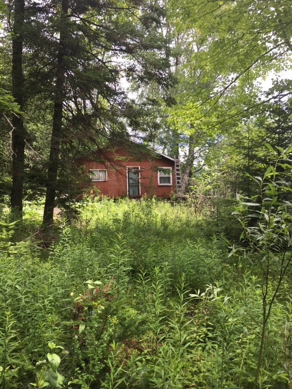 1359 DARDANELLES RD, Haliburton, Ontario (ID 392630118)