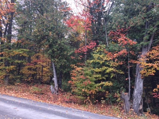 0 OLD APSLEY ROAD, North Kawartha, Ontario (ID 282840161)