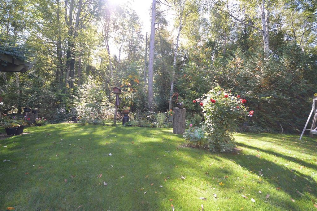 6545 PINE TRAIL Avenue, Lambton Shores, Ontario (ID 20013350)