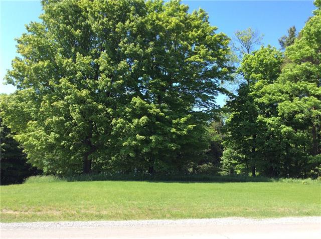 805 PT lt 10-11 COUNTY ROAD 60 ., Walsingham, Ontario (ID 30772725)