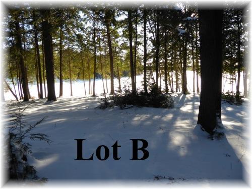 Bluebird Lane, Apsley, Ontario (ID 1536Pol)