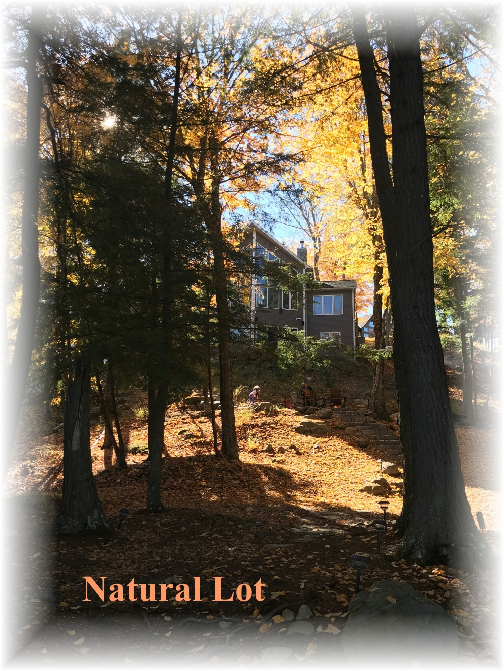 2 Antler Trail, Apsley, Ontario (ID 1531B&M)