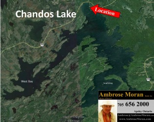 44 Lakeshore , Apsley, Ontario (ID 1536claklakview)