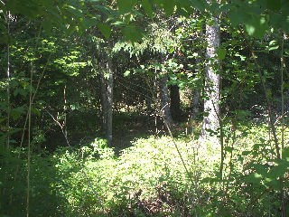 860 SALT SPRINGS RD, Titusville, New Brunswick (ID 082943)
