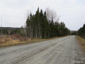 19 Acres +/- Route 860, Salt Springs, New Brunswick (ID NB053957)