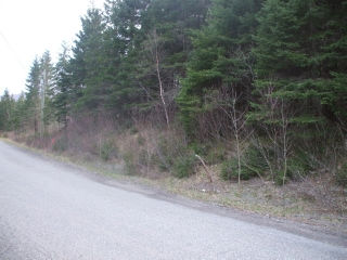 - PASSEKEAG RD, Salt Springs, New Brunswick (ID SJ101682)
