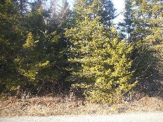 860 TITUSVILLE RD, Upham, New Brunswick (ID 080904)