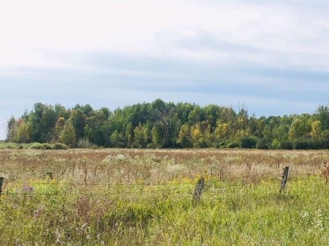 B1790 Regional Road 15 Rd, Brock, Ontario (ID N4659491)