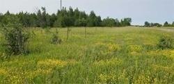Lot 7 Highway 48 Rd, Brock, Ontario (ID N4659619)