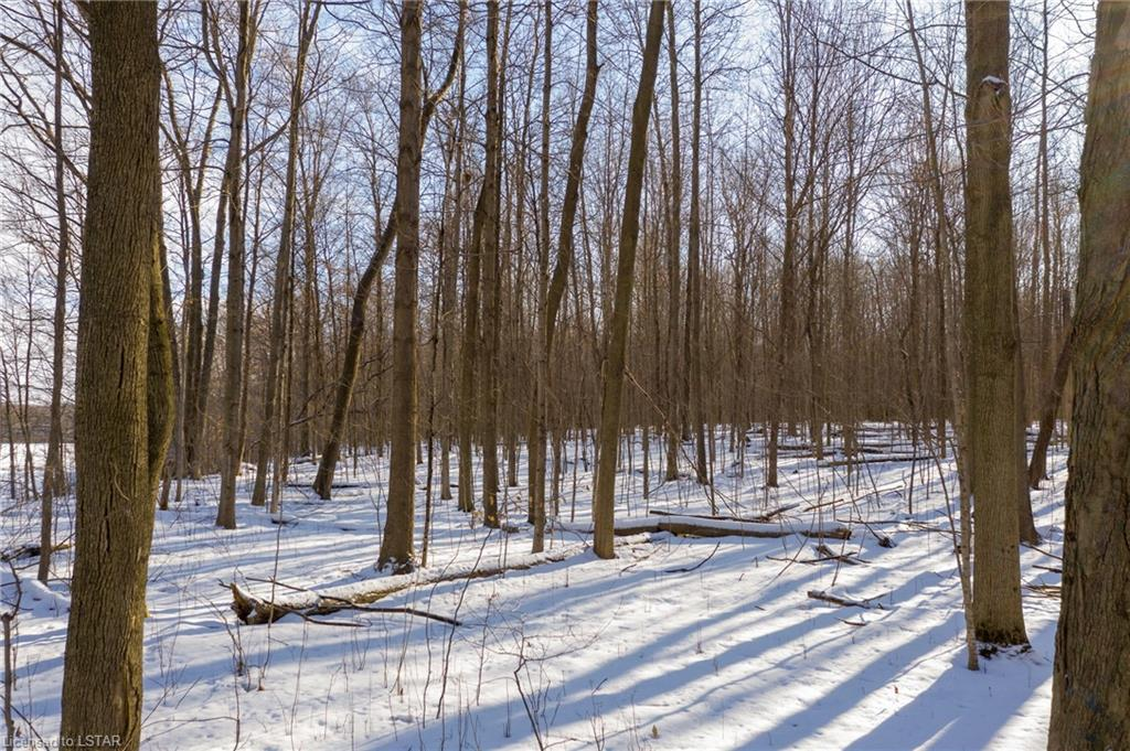 CARRIAGE Road, Delaware, Ontario (ID 245832)