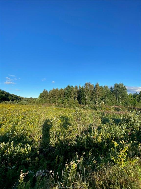 Lot 6 Con 3 McKenzie Road, Chelmsford, Ontario (ID 2088251)