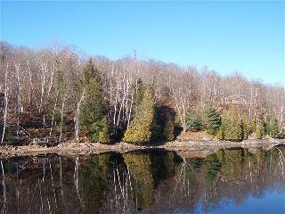 1603�CLAUDE BROWN�RD��, Minden, Ontario (ID 461601000027500)