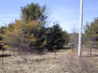 �ST PETERS�RD��, Carnarvon, Ontario (ID 462100100076525)