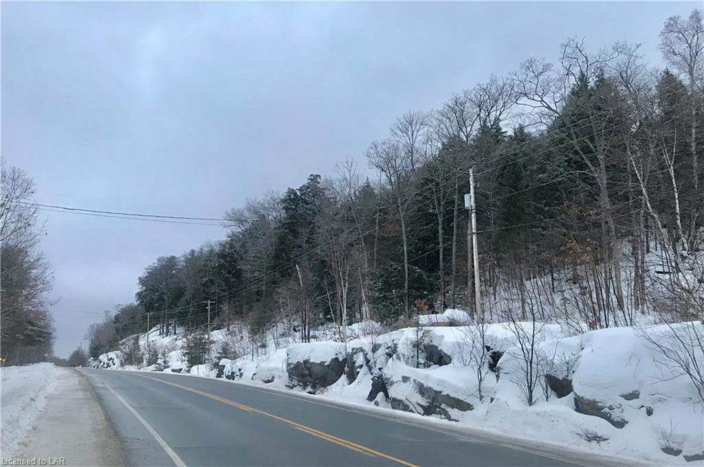 MUSKOKA ROAD 117 Highway, Dorset, Ontario (ID 238423)