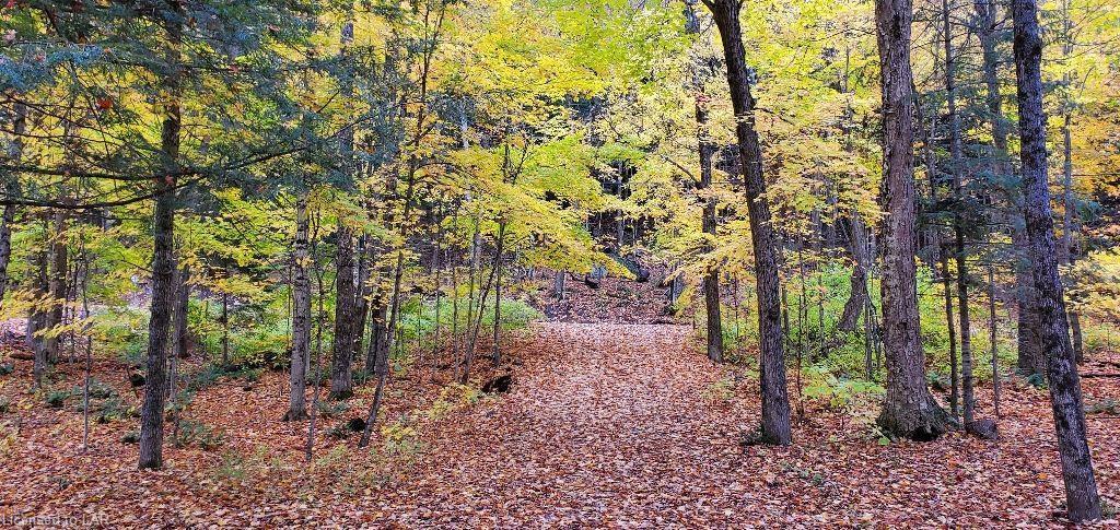 1352 DIGNAN Road, Fort Irwin, Ontario (ID 40045812)