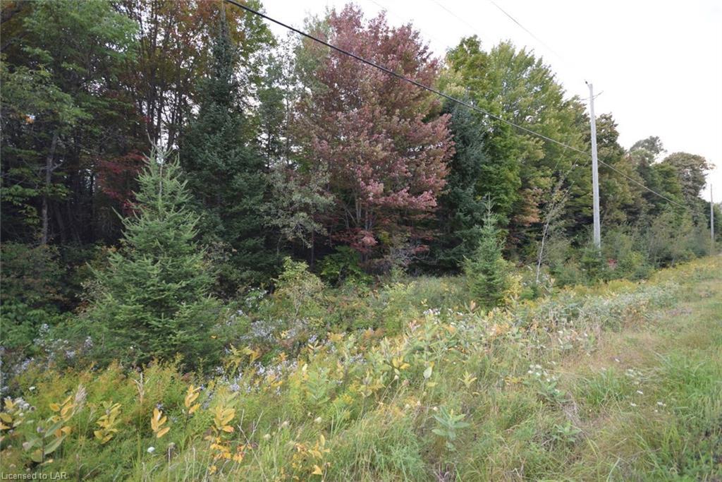 # 503 Highway, Gooderham, Ontario (ID 112723)