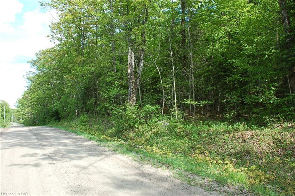 - LOON LAKE Road, Haliburton, Ontario (ID 121891)