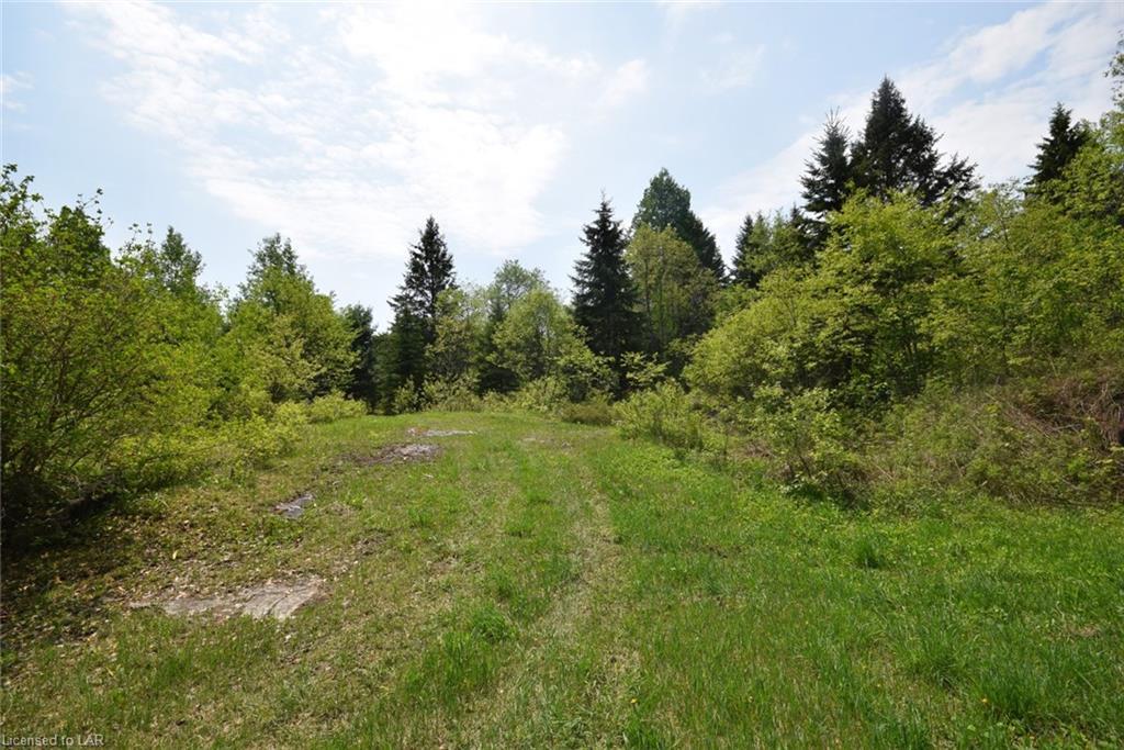 1188 PROVOST Road, Haliburton, Ontario (ID 129124)