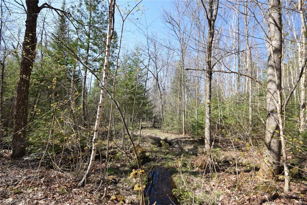 - LAKEVIEW Road, Haliburton, Ontario (ID 129574)