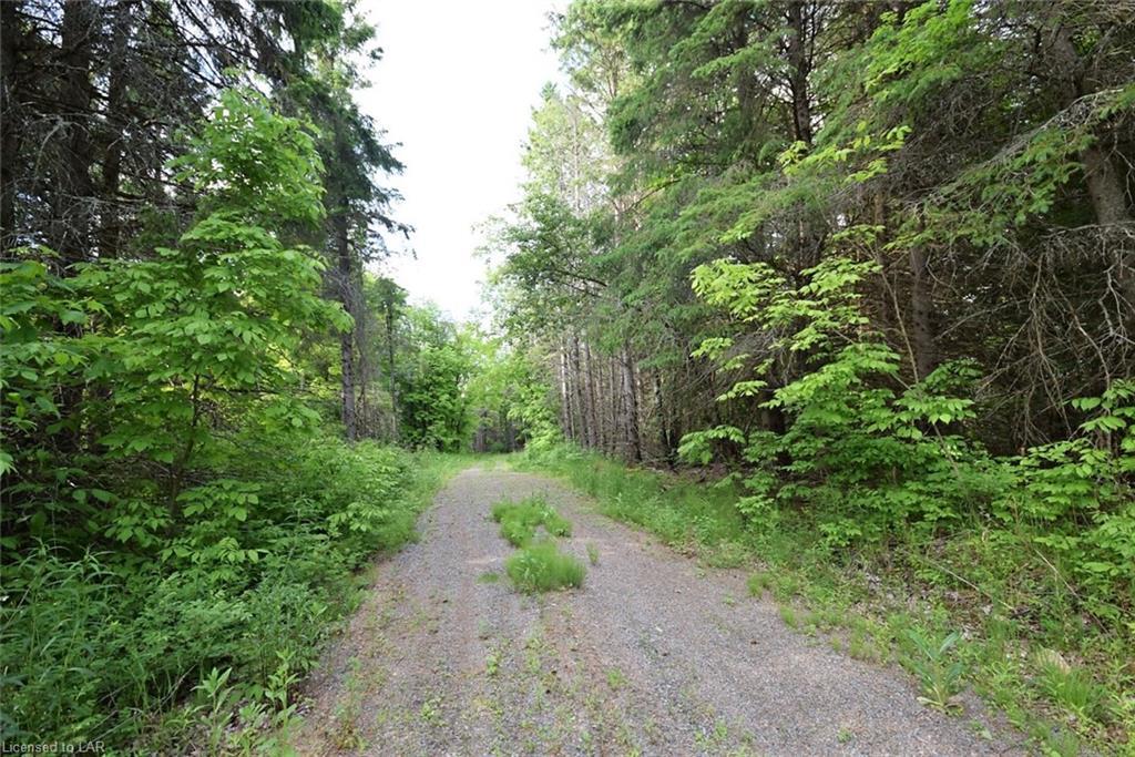 - MORAINE Drive, Highlands East, Ontario (ID 204487)