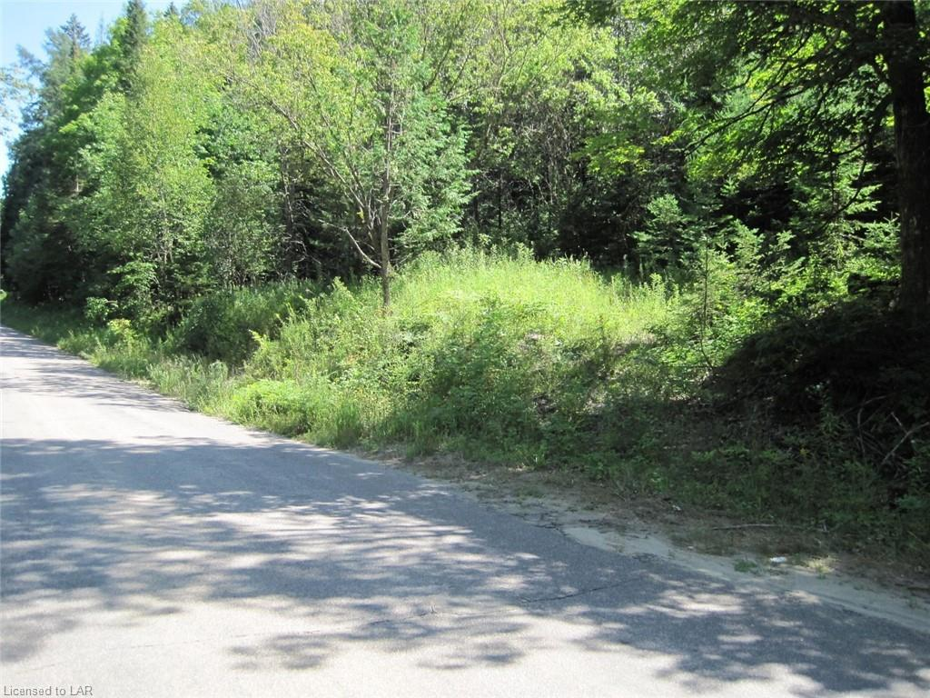- FRED JONES Road, Haliburton, Ontario (ID 235880)