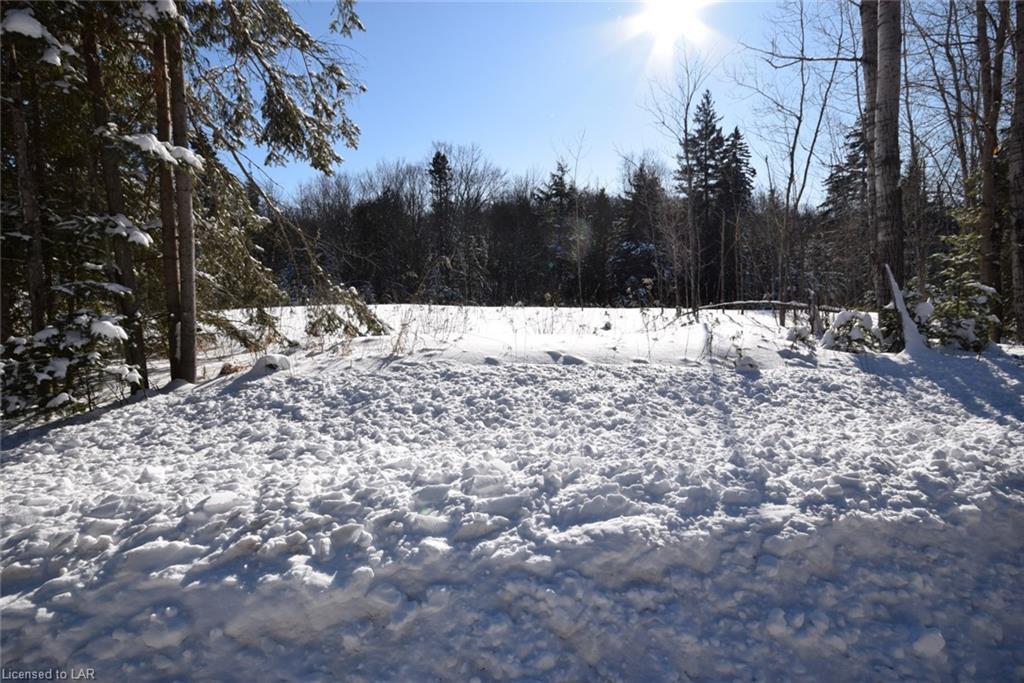 1532 REYNOLDS Road, Minden, Ontario (ID 240937)