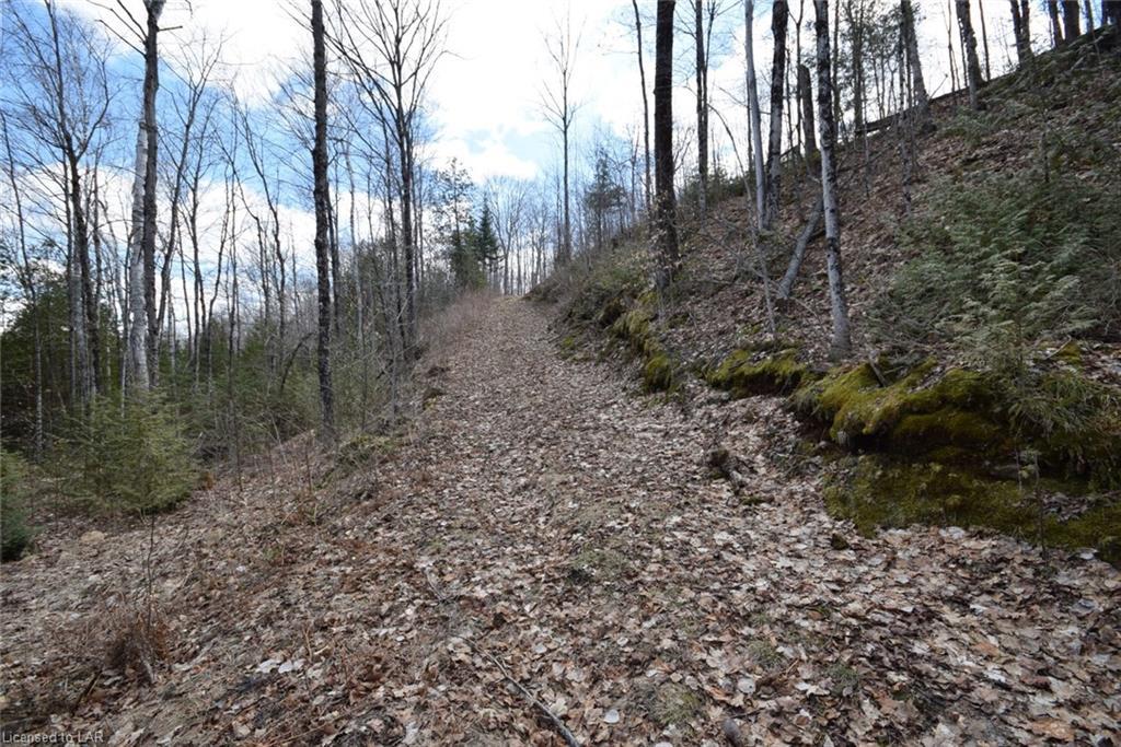 LT 20 GREG KNIGHTS Trail, Minden, Ontario (ID 255265)
