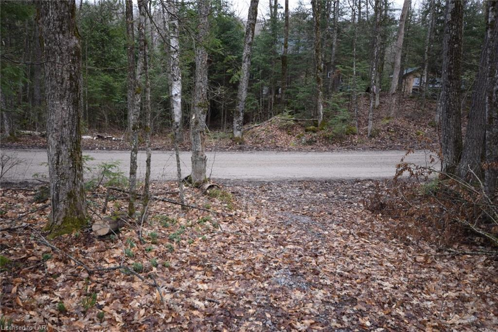- SALERNO LAKE Road, Haliburton, Ontario (ID 257873)