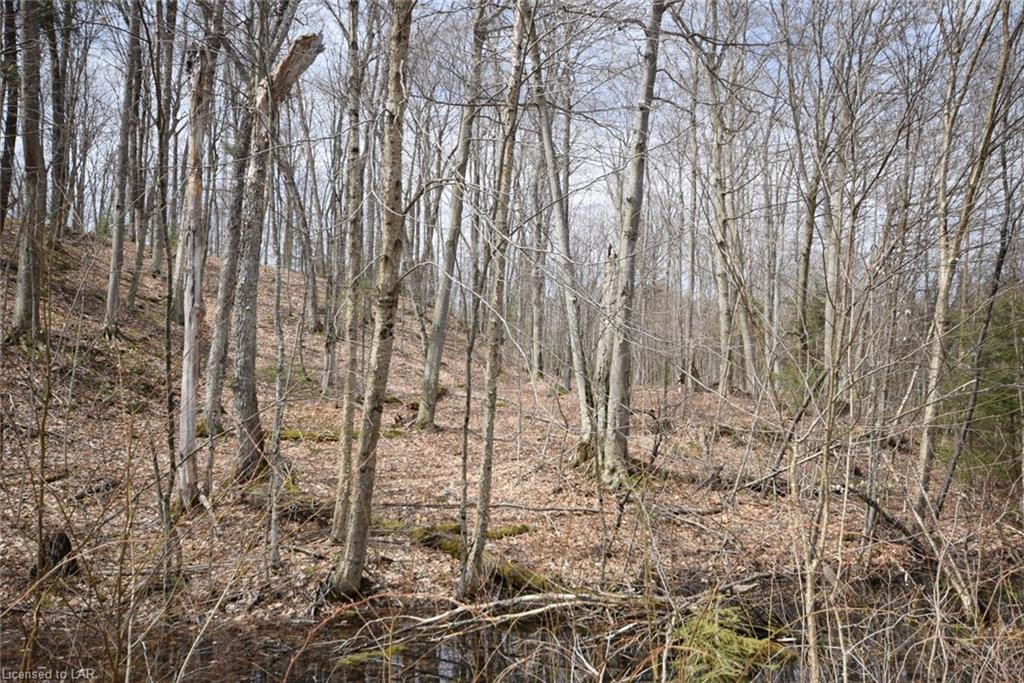 LOT 22 TOWER Road, Haliburton, Ontario (ID 259717)