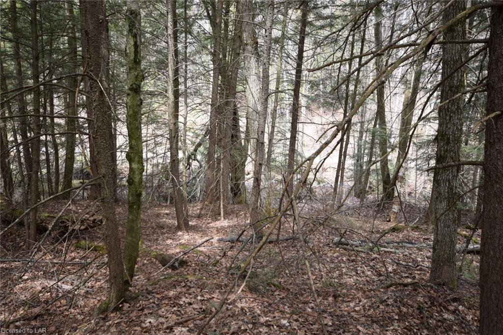 LT 116 BASSHAUNT LAKE Road, Haliburton, Ontario (ID 259745)