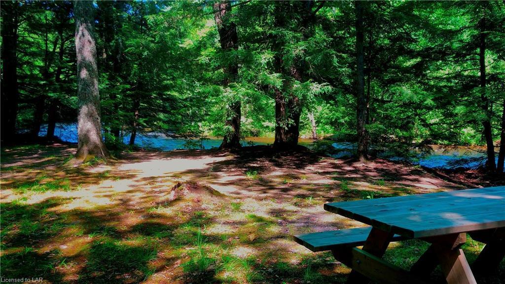 1617 LITTLE HAWK LAKE Road, Algonquin Highlands, Ontario (ID 271450)